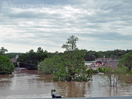 Flood02_4.30.17