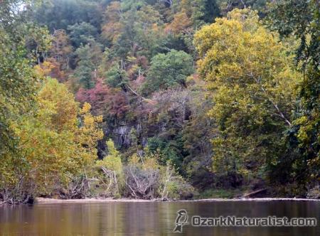 current-river02_9-26-15