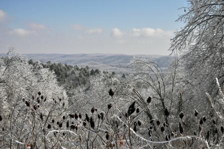 icy-vista
