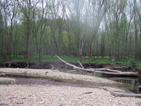 rippee-creek-rca-2